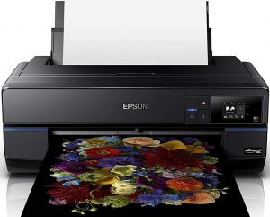 Epson SureColor P800 Printer for Transparencies