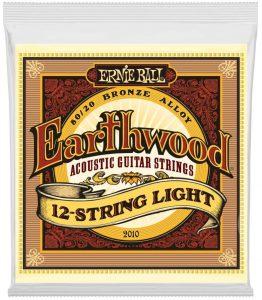 Ernie Ball Earthwood 12-String