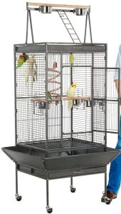 Yaheetech cage for African Grey