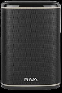 RIVA ARENA Smart Speaker