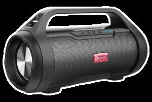 Woozik Wireless Portable Speaker